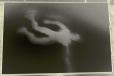 Envol noir décomposé